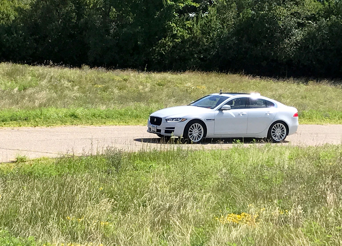 Jaguar-out-on-the-course